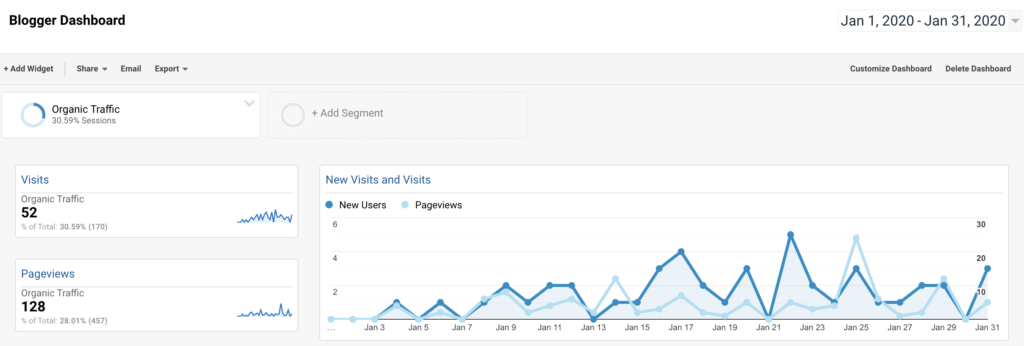 month one google analytics - Diet Niche Case Study