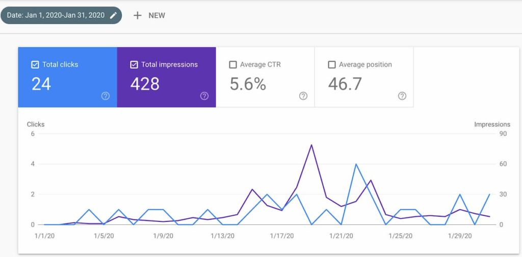 month one google search console - Diet Niche Case Study