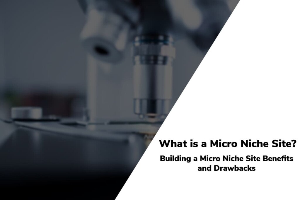 Hero image of a microscope as a play on words for What is a Micro Niche Site